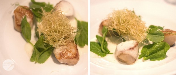 seared scallops, pea tendril panna cotta, smoked ham emulsion & crispy leek