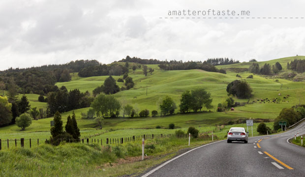 drivingsouth-new-zealand