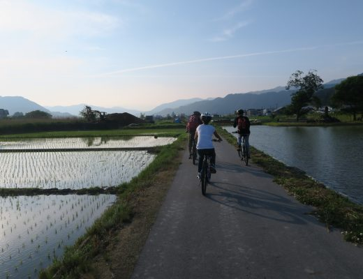 cycling-in-japan-satoyama-experience-vrice-fields